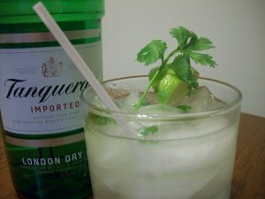 Cilantro Gin and Tonic